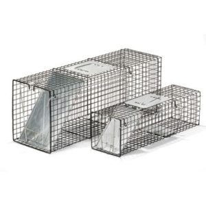 the Animal Guy Wildlife Removal Traps